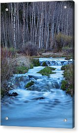 Blue Hour Streaming Acrylic Print by James BO Insogna