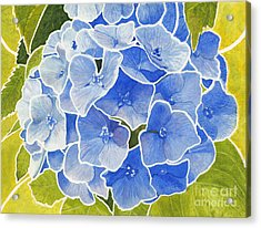 Blue Hydrangea Stained Glass Look Acrylic Print