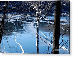 Blue Ice Acrylic Print by Andrea Simon