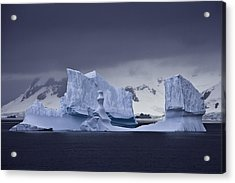 Blue Ice Antarctica Acrylic Print