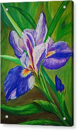 Acrylic Print featuring the painting Blue Iris by Debbie Baker