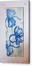 Blue Irises Acrylic Print by Sheri Hubbard