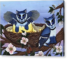 Acrylic Print featuring the painting Blue Jay Kittens by Carrie Hawks