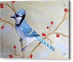 Acrylic Print featuring the painting Blue Jay by Laurel Best