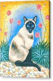 Blue Kitty Acrylic Print