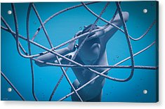 Acrylic Print featuring the digital art Blue Lady by Shinji K