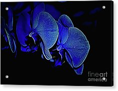 Blue Light Acrylic Print