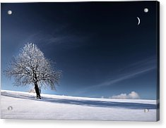 Acrylic Print featuring the photograph Blue Like Snow by Philippe Sainte-Laudy