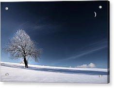 Blue Like Snow Acrylic Print by Philippe Sainte-Laudy