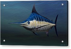 Acrylic Print featuring the painting Blue Marlin by Walter Colvin
