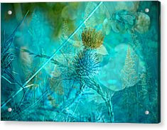 Blue Montage Acrylic Print by Bonnie Bruno