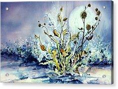 Blue Moon Floral Acrylic Print
