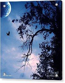 Blue Moon Acrylic Print by Julie Dant
