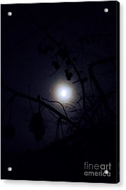Blue Moons Acrylic Print by The Stone Age