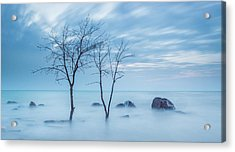 Blue Morning Acrylic Print