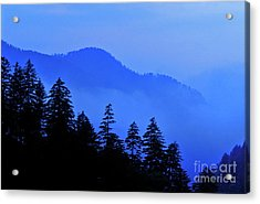 Acrylic Print featuring the photograph Blue Morning - Fs000064 by Daniel Dempster
