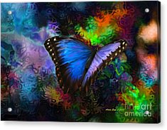 Blue Morpho Butterfly Acrylic Print by Annie Zeno