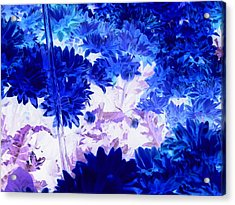 Blue Mums And Water Acrylic Print