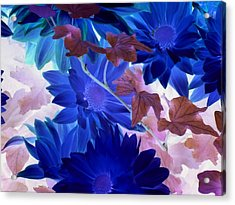 Blue Mums With Purple Ivy Acrylic Print