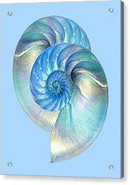 Blue Nautilus Pair Acrylic Print by Gill Billington