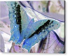Blue Negative Acrylic Print by JAMART Photography