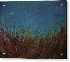 Blue Acrylic Print by Nereida Slesarchik Cedeno Wilcoxon