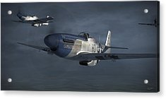 Blue Nosers Acrylic Print by Robert Perry