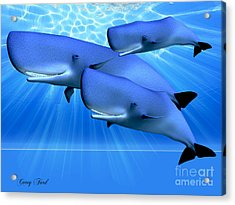 Blue Ocean Acrylic Print by Corey Ford