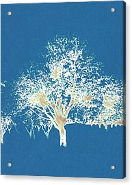 Acrylic Print featuring the painting Blue Orchard by Frank Tschakert