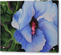 Blue Petals Acrylic Print by Candice Wright