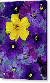 Blue Pond Acrylic Print by JQ Licensing