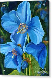 Blue Poppy Acrylic Print by Renate Nadi Wesley