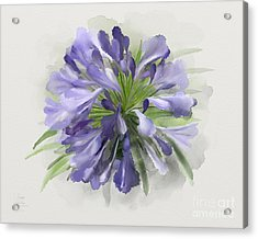 Acrylic Print featuring the painting Blue Purple Flowers by Ivana Westin