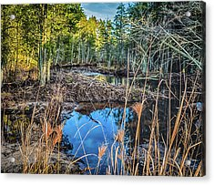 Blue Reflection Acrylic Print