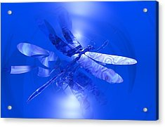 Blue Reflections Dragonfly Acrylic Print