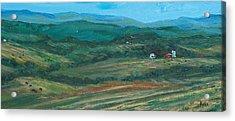 Blue Ridge Black Cows Acrylic Print by Pete Maier