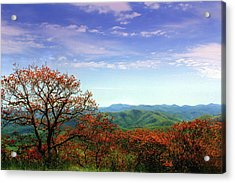 Acrylic Print featuring the photograph Blue Ridge Blessing by Jessica Brawley