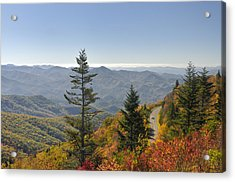 Blue Ridge Drive Acrylic Print by Darrell Young
