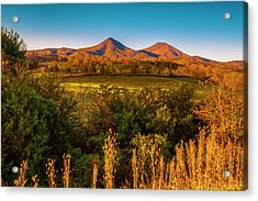 Acrylic Print featuring the photograph Blue Ridge Fall by Steven Ainsworth