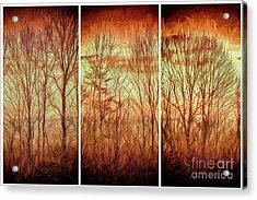 Blue Ridge Mountain Winter Trees At Sunrise Fx Acrylic Print
