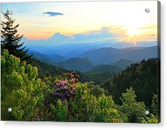 Blue Ridge Parkway And Rhododendron  Acrylic Print