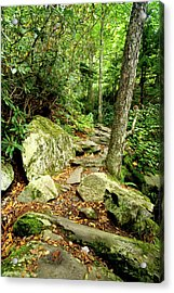 Acrylic Print featuring the photograph Blue Ridge Parkway Hiking Trail by Meta Gatschenberger