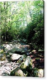 Blue Ridge Parkway Stream Acrylic Print