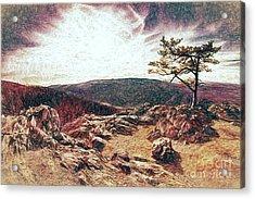 Blue Ridge Rocky Hilltop And Tree At Sunset Fx Acrylic Print by Dan Carmichael