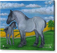 Blue Roan Mare With Her Colt Acrylic Print