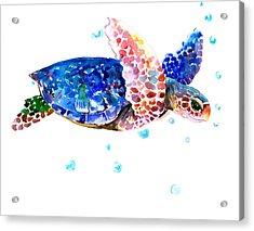 Blue Sea Turtle Acrylic Print