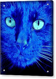 Acrylic Print featuring the photograph  Blue Shadows by Al Fritz