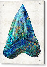 Blue Shark Tooth Art By Sharon Cummings Acrylic Print by Sharon Cummings