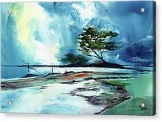 Acrylic Print featuring the painting Blue Sky by Anil Nene