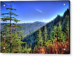 Acrylic Print featuring the photograph Blue Skykomish by Spencer McDonald